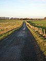 Country Road Between Carnduff and Dykehead - geograph.org.uk - 95306.jpg