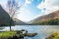County Wicklow - Glendalough - 20200315170320.jpg