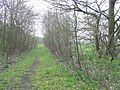 Course of Old Railway, Pillaton, Staffordshire - geograph.org.uk - 397586.jpg