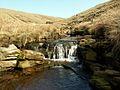 Crowden Little Brook - geograph.org.uk - 392564.jpg