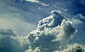 Cumulus cloud before rain.jpg