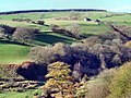 Cwm Ogwr Fach - geograph.org.uk - 1276353.jpg