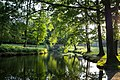 Dülmen, Wildpark, Teich am Eingang -- 2013 -- 0797.jpg
