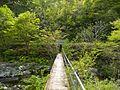 Dai 1 Chiwari Wainai, Miyako-shi, Iwate-ken 028-2105, Japan - panoramio (2).jpg