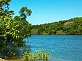 Daintree River - Fluss (23160806415).jpg