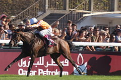 Danedream wins the 2011 Arc for Germany.jpg