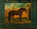 Daniel Quigley - The Godolphin Arabian - Google Art Project.jpg