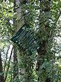 Dargow Naturschutzgebiet Schild Reiter 2011-07-16 012.JPG