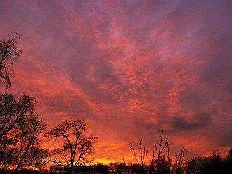 North Brabant - Sunset at the Peel, North Brabant, Netherlands