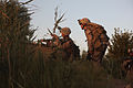 Defense.gov News Photo 100610-M-9966L-018 - U.S. Marines with 2nd Platoon Lima Company 3rd Battalion 6th Marine Regiment Regimental Combat Team 7 look for an enemy position while on.jpg