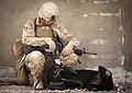 Defense.gov News Photo 120318-M-MM918-007 - U.S. Marine Lance Cpl. Evan Frickey a dog handler with 3rd Marine Regiment plays with Cookie an improvised explosive device detection dog while.jpg