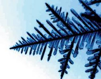 Dendrite (crystal) - Ice dendrite formation on a snowflake