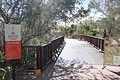 Desert Botanical Garden-2.jpg
