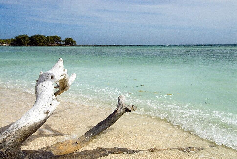 Desroches beach (Pietervisser) 02