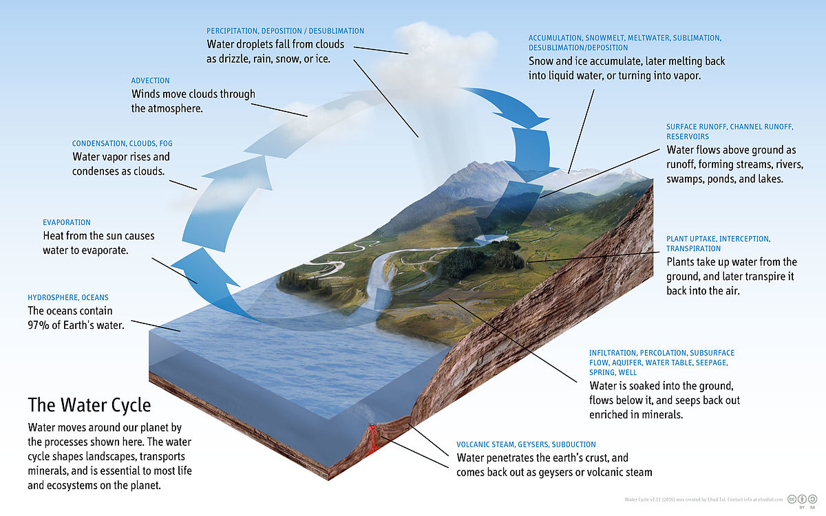 water cycle wikipedia Evaporation Precipitation Runoff Surface Runoff Diagram #19