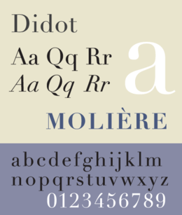 typographie didot