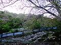 Dimko Najdov, Veles, Macedonia (FYROM) - panoramio (1).jpg