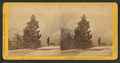 Distant views of the Sierra Nevadas, from South Dome, by John P. Soule.png