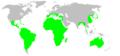 Distribution.selenopidae.1.png