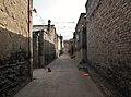 Dog in an alley (6240647978).jpg
