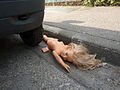 Doll roadkill 1.jpg