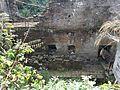 Dolní Žleb - ruina mlýna obr04.jpg