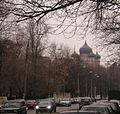 Donskoi9.jpg