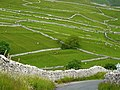 Dry stone walls at Malham - geograph.org.uk - 1368130.jpg