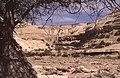 Dunst Oman scan0309.jpg