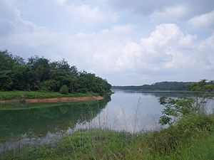 Durian Tunggal Reservoir