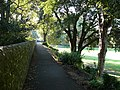 East Walls in Priory Park - geograph.org.uk - 983982.jpg