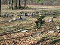 Easthaven Church of Christ Cemetery Memphis TN 004.jpg
