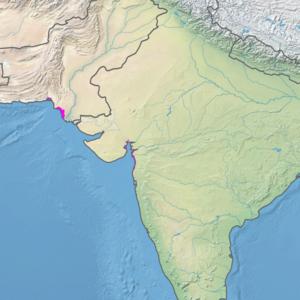 Ecoregion territory (in purple)