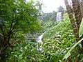 Eden Project - panoramio - Dawid Glawdzin.jpg