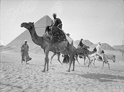 Egypt. Pyramids of Gizeh. Camels & riders near the Great Pyramid LOC matpc.17950.jpg