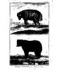 Encyclopedie volume 5-035.png