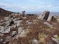 Erratic graveyard - geograph.org.uk - 779825.jpg