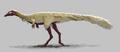 Erythrovenator jacuiensis.png