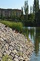 Escullera amb ànecs, parc de Capçalera de València.JPG