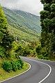 Estrada ilha do pico.jpg