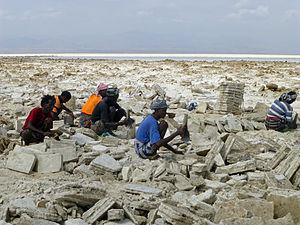 Lake Karum - Image: Ethiopie Exploitation du sel au lac Karoum (19)