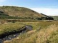 Ettrick Water - geograph.org.uk - 553028.jpg