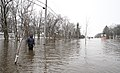 FEMA - 40417 - Resident wades through water in Minnesota.jpg