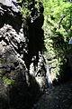 FR64 Gorges de Kakouetta13.JPG