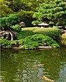 FW Japanese Garden Fish Pond (5551389041).jpg