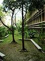 Faculdade de Letras da UFRJ.jpg