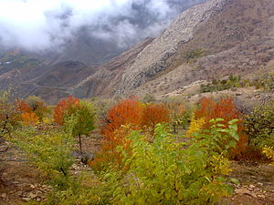 Alamut - Image: Fall in Hir