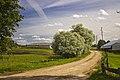 Farm Bētas - panoramio (6).jpg