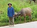 Farmer in North Vietnam (near Lao Cai) - panoramio.jpg