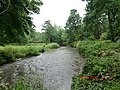 Fast stream through Blarney Castle Grounds - panoramio (1).jpg